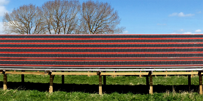 Polymer solar cell array