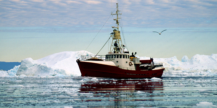 Fishing boat surrounded by ice in Arctic waters